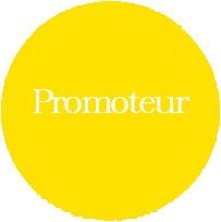 p_promoteur